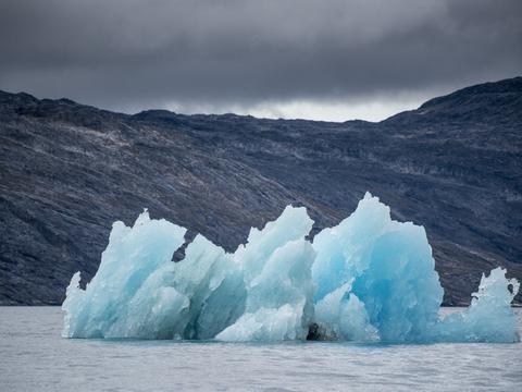 Coronaudbruddet kan reducere verdens samlede CO2-udslip med over fem procent i forhold til sidste år. Det viser en analyse fra klimanyhedshjemmesiden Carbon Brief ifølge ABC Nyheder.