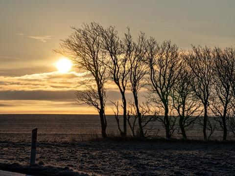 Mandag morgen og formiddag er der i Jylland og på Fyn risiko for rimtåge. (Arkivfoto)