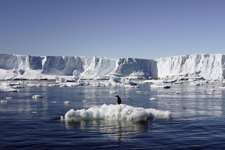 Det er t-shirtvejr på Antarktis med temperaturer omkring 20 grader. De seneste års temperaturstigninger bør bekymre os alle, mener dansk klimaforsker. (arkivfoto).