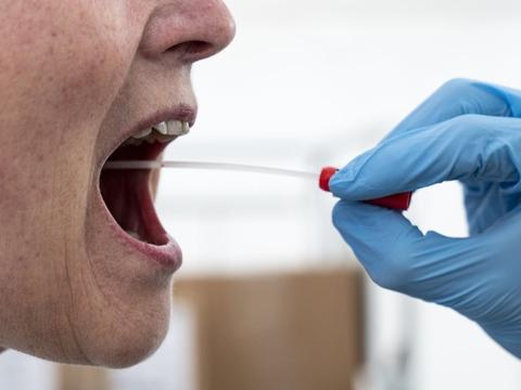 De 497 nyeste smittetilfælde er fundet på 138.184 PCR-test i de offentlige testcentre og på sygehusene. Andelen af positive - positivprocenten - er på 0,36. (Arkivfoto)