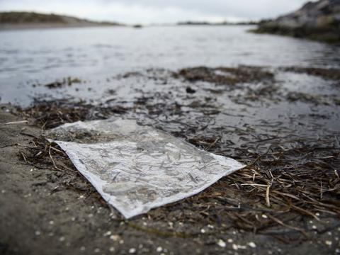 Forsyningsselskabet Hofor skulle i den kommende uge have udledt 290.000 kubikmeter spildevand i Øresund, men udledningen bliver nu udskudt til efteråret. (Arkivfoto)
